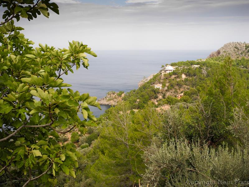 Mirador en la carretera de Sóller a Valldemossa.