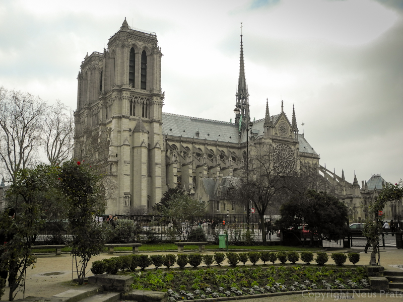 Vista de Notre Dame desde la Place René Viviani.
