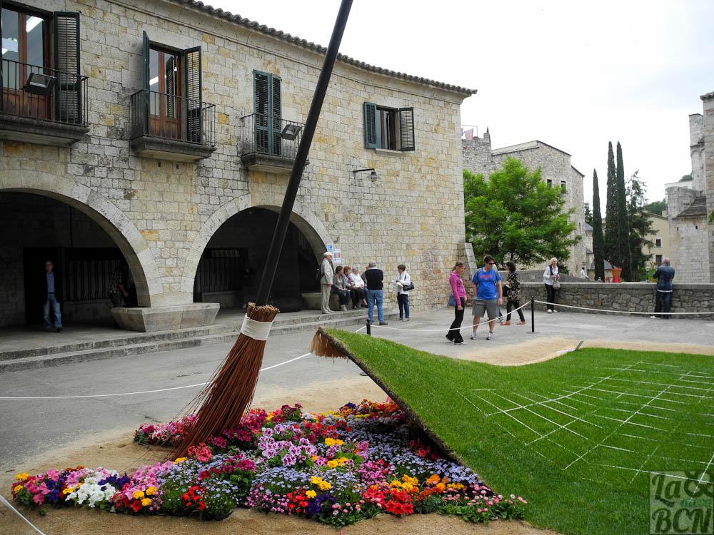 Girona flors 329